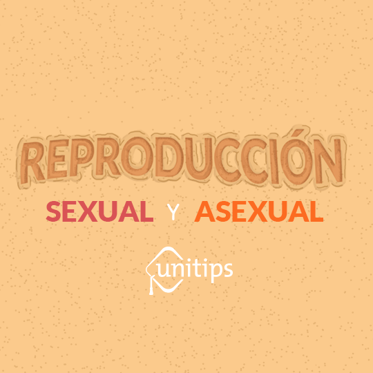 Contenido de examen UNAM: Tipos de reproducción