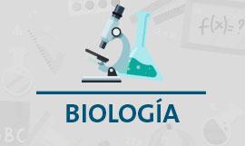 Regularización Biología